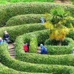 Садовый лабиринт – как сделать в саду своими рукам