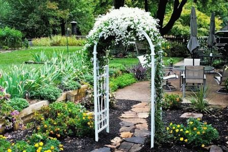 клематис в саду арка белая фото