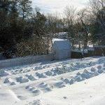 Календарь огородника на январь: дела на даче