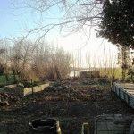 Календарь огородника на ноябрь: дела на даче