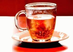 Чай Амарант целебные свойства фото