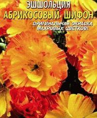 эшшольция сорт Абрикосовый шифон фото