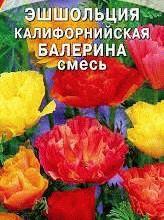 эшшольция сорт Балерина фото