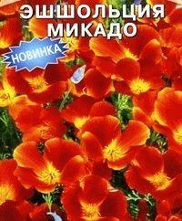 эшшольция сорт Микадо фото