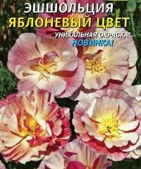 эшшольция сорт Яблоневый цвет фото