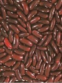 фасоль сорт Рубин фото