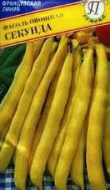 фасоль сорт Секунда фото