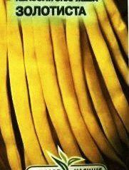 фасоль сорт Золотистая фото