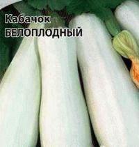 кабачок сорт Белоплодный фото