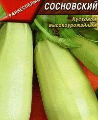 кабачок сорт Сосновский фото