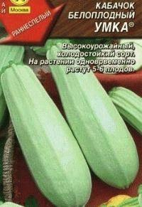 кабачок сорт Умка фото