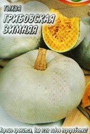 тыква сорт Грибовская зимняя фото