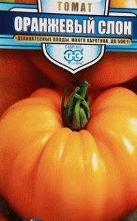 помидоры сорт Оранжевый слон фото