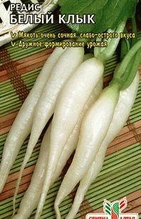 редис сорт Белый клык фото