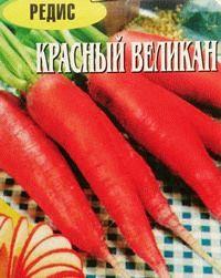 редис сорт Красный великан фото