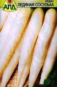 редис сорт Ледяная сосулька фото