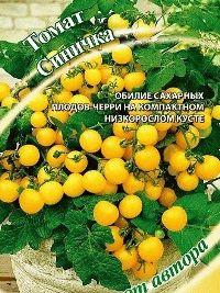 помидоры сорт Синичка фото