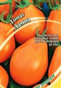 помидоры сорт Лампа фото