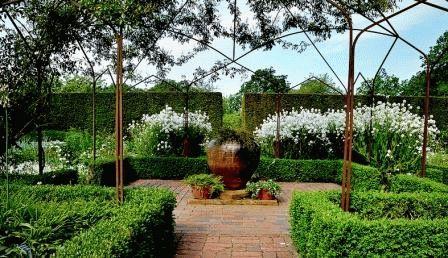 белый сад фото