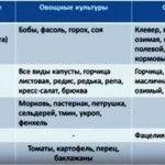 таблица сидератов