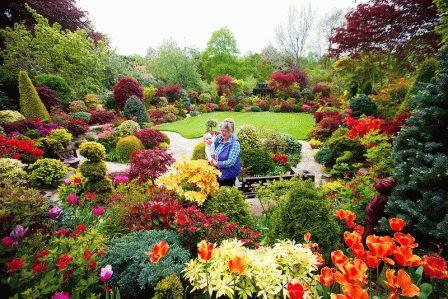 красный сад фото