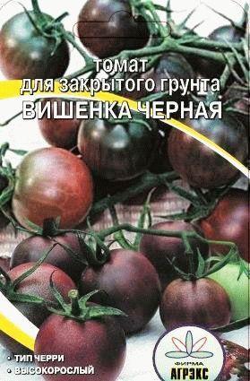 томат черри сорт  Вишенка черная фото
