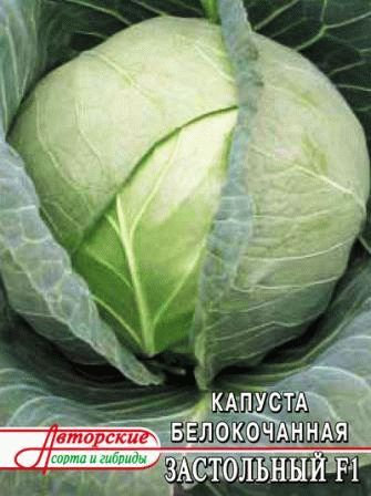 капуста для квашения сорт Застольный фото