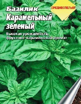 базилик семена