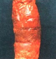 Мокрая гниль моркови фото