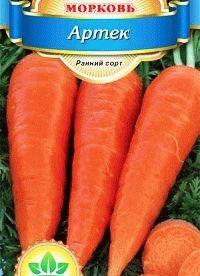 морковь сорт Артек фото