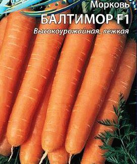 морковь Балтимор фото