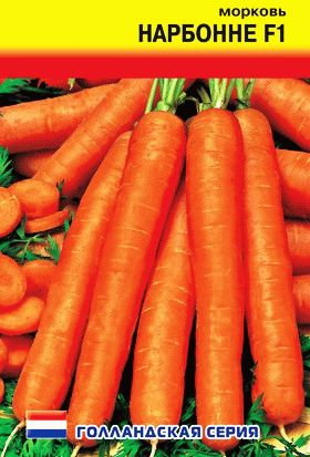 морковь сорт Нарбонне фото
