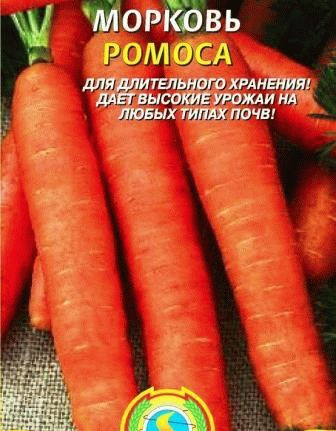 морковь Ромоса фото