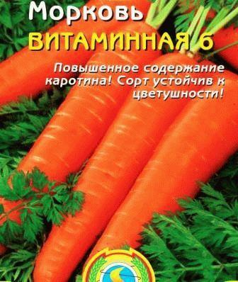 морковь Витаминная 6 фото