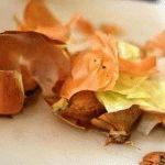 Польза луковой шелухи, применение для сада и огорода