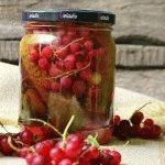 Маринованные огурцы с красной смородиной на зиму, рецепты с фото
