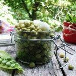 Консервирование зеленого горошка: рецепты на зиму и быстрого приготовления