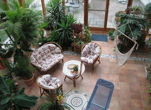 Зимний сад – оранжерея фото