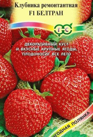 земляника ремонтантная БЕЛТРАН фото