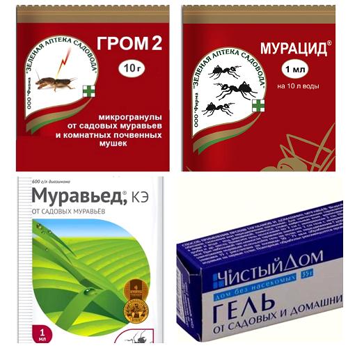 protiv murovyev