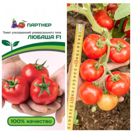 tomat lubasha