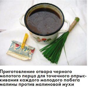 с помощью отвара черного молотого перца