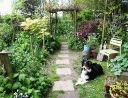 Календарь огородника на июль: дела на даче