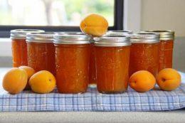Рецепты на зиму: абрикосовый джем, повидло, конфитюр