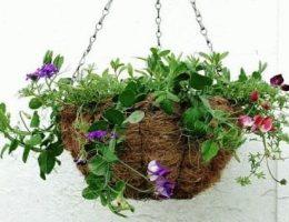 подвесные кашпо с цветами фото
