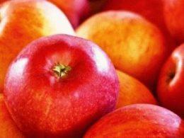 Как хранить яблоки зимой в квартире, погребе, на даче