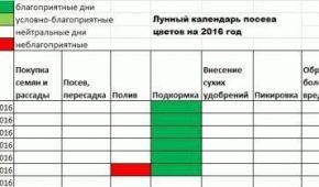 Миниатюра к статье Лунный календарь посадки цветов на 2018 год для цветоводов