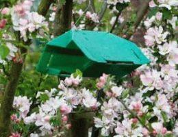 обработка сада от вредителей фото