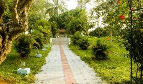 Миниатюра к статье Как выбрать тротуарную плитку для садовых дорожек