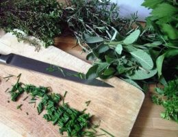 Консервируем зелень на зиму – рецепты засолки, заморозки, маринования